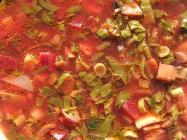 Rdestowiec jako dodatek do zupy weganskiej - blog Marii Bucardi