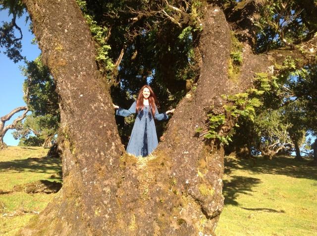 Maria Bucardi w Lesie Elfów