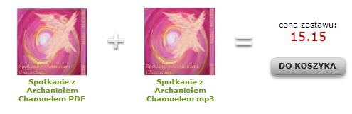 Przejdz do Magicznego Swiata by kupic caly zestaw Archaniola Chamuela