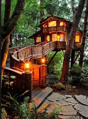 dom_na_drzewie1