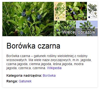 borowka_cukrzyca
