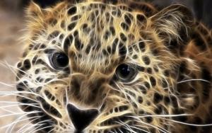 zwierze_mocy3