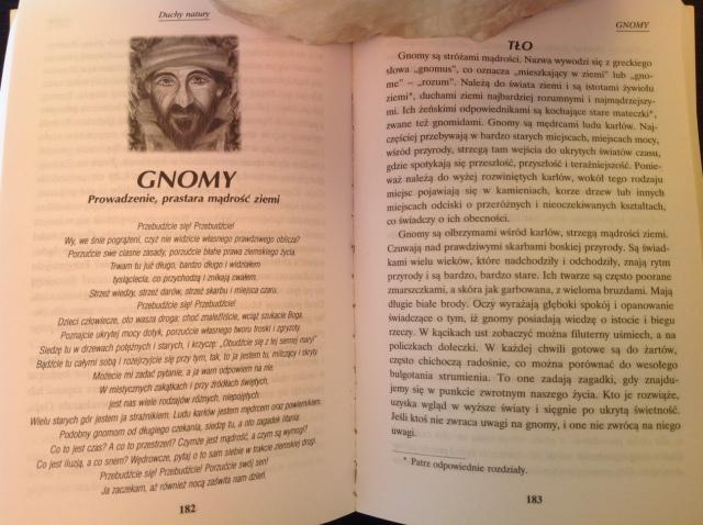 gnomy1