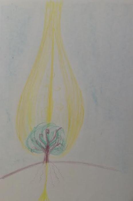 istoty_drzew